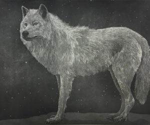 """Welcome Back Wolf""  2016 aquatint etching, framed editions of 10 31x37"" • SOLD"