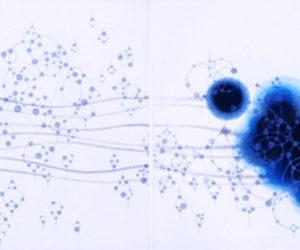 """Origin Blue Consonant II 2011 intaglio limited edition print 22x30"""" framed"""