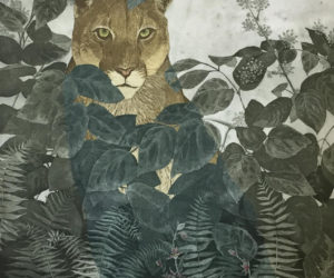 """Mountain Lion in Elk Clover, Sword Fern and Stream Orchid""  2015 collage of aquatint etching, framed  edition 10/10 37x30"" • SOLD"
