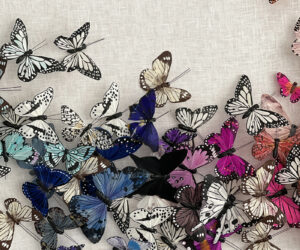 Detail, 'Untitled (Multicolor Butterflies)