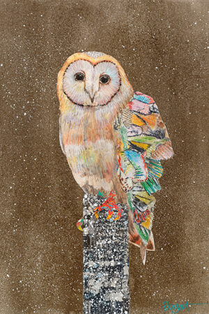 """""""Barn Owl On A Snowy Night #4"""" Drawing, Collage or other Work on Paper, 37""""x30"""" • SOLD"""