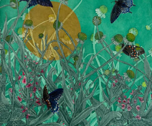 """""""Pipevine Swallowtails,"""" 2021 Mixed Media Aquatint etchings and acrylic, 18""""x14"""""""