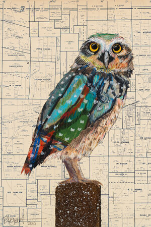"""""""Screech Owl #1"""" Collage and Paint, natural wood float frame, 17.5""""x13.5"""" • SOLD"""
