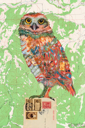 """""""Screech Owl #4"""" Collage and Paint, natural wood float frame, 17.5""""x13.5"""" • SOLD"""