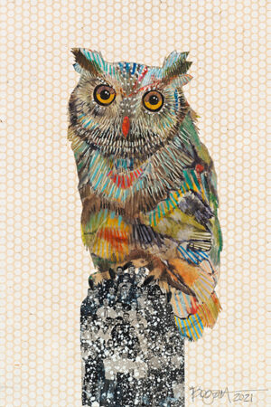 """""""Screech Owl #7"""" Collage and Paint, natural wood float frame, 17.5""""x13.5"""" • SOLD"""